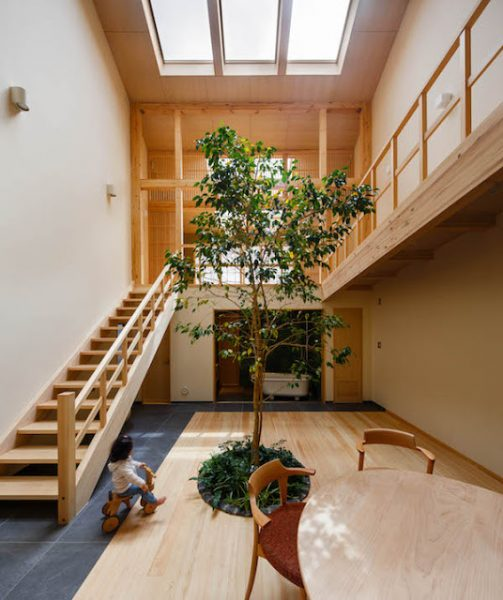Located in Kyoto, this house is built by an architecture firm named 07BEACH. It incorporates a double-height living room with an indoor tree growing at its center.